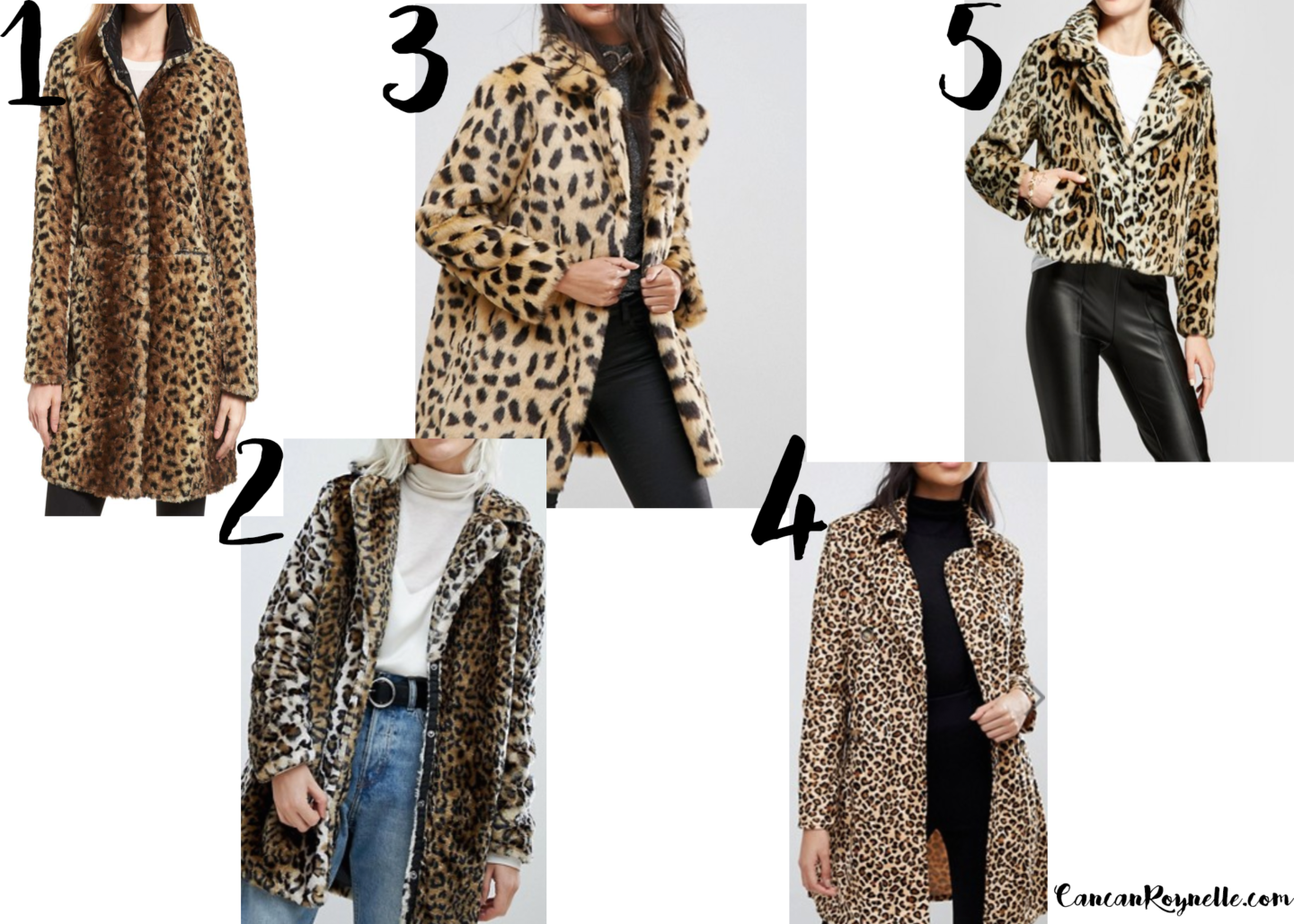 5 Leopard Print Coats that You Need || CancanRoynelle.com